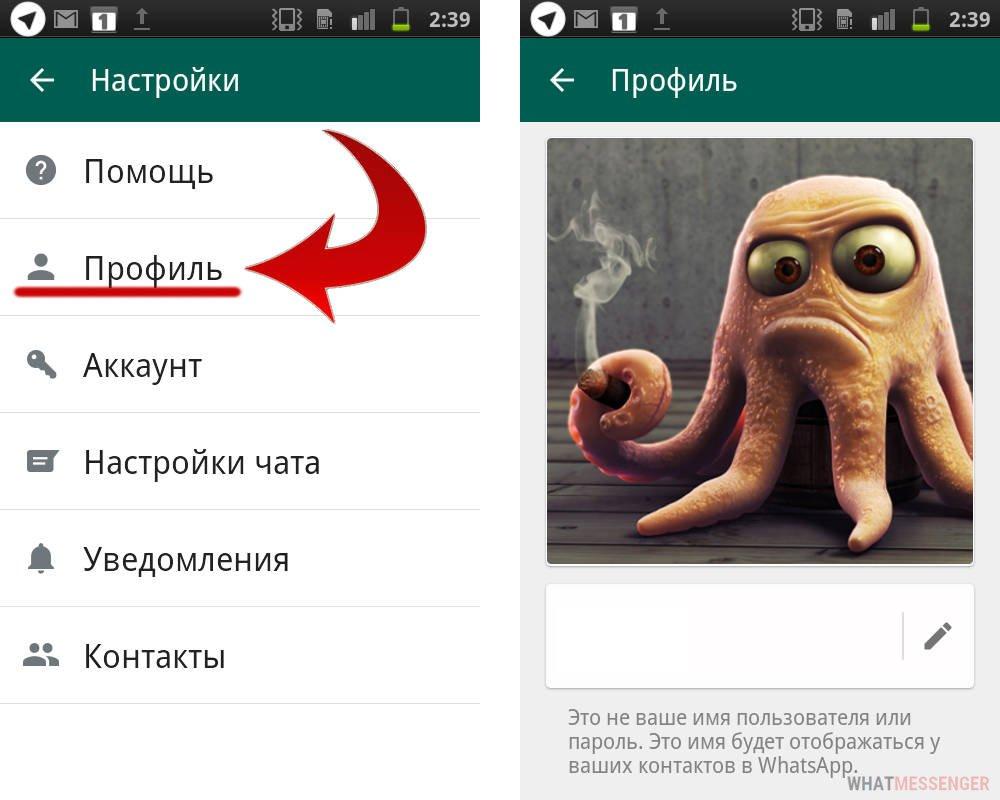 Как найти картинки в вацапе, молдова летом