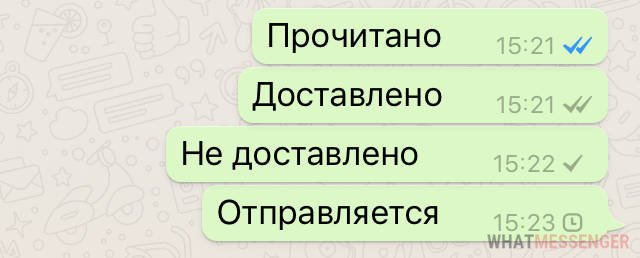 Уведомления в вотсапе