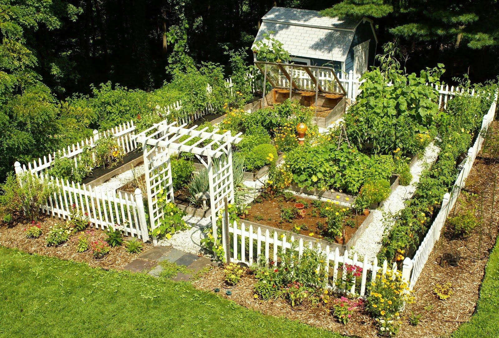 сад и огород своими руками фото интересные сделать