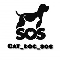 Cat_Dog_Sos